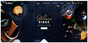 Sibaz WordPressDD developed Project
